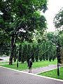 80-382-0088 Kiev Grushevskogo Park 002.jpg