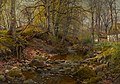 A Forest Stream by Peder Mork Monsted.jpg