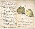 A Letter to Eugène Maus, Decorated with Two Plums MET DP807588.jpg