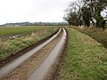 A narrow country lane - geograph.org.uk - 1117006.jpg