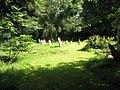 A verdant churchyard at St Margaret, Abdon - geograph.org.uk - 1447102.jpg