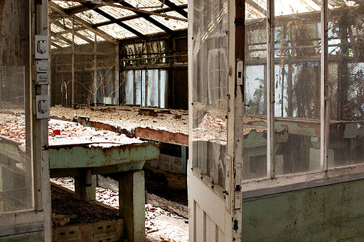 Abandoned Green House 3 (5772180193)