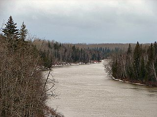 Abitibi River tributary of Moose river, flowing in North-East of Ontario, in Canada.