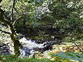 Above Chia-aig falls - geograph.org.uk - 982926.jpg
