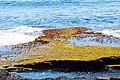 Acadia 2012 08 24 0071 (7958619798).jpg