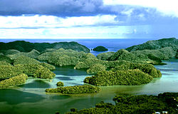 Aerial view of uplifted limestone islands in Palau.jpg