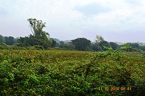 Aghione - Aghione Landscape