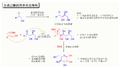 Aldol-33-CHSP.png
