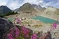 Alpy, Lago di Miage, imgp5322 (2016-08).jpg