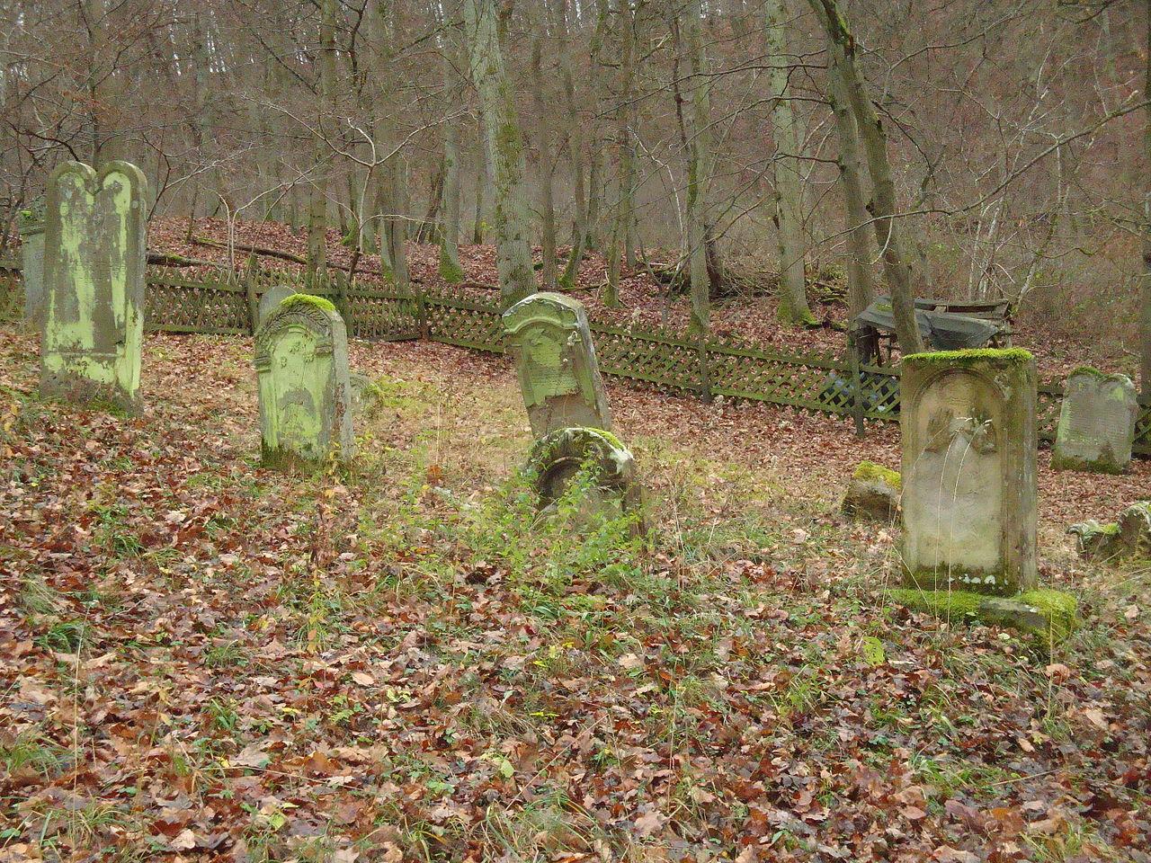 Denkmalzone Alter jüdischer Friedhof