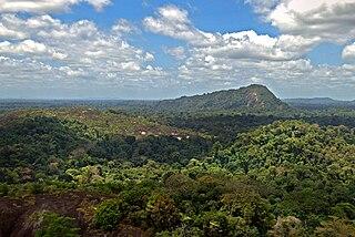 Boven Coppename Resort in Sipaliwini District, Suriname
