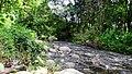 Anakkal Water Falls - panoramio (3).jpg