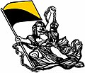 Ancap-goldblack flag.jpg