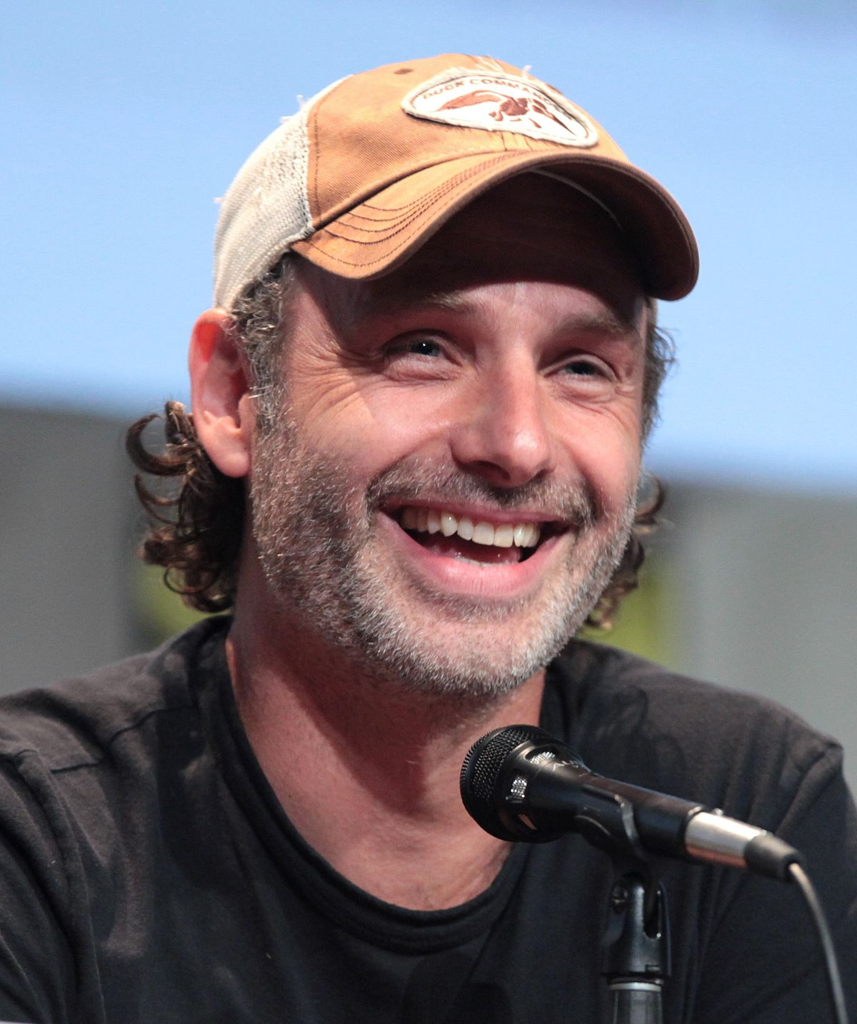 andrew lincoln wicipedia