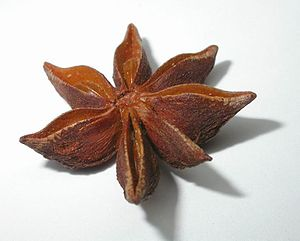 Star Anise is a very common flavouring in Chin...