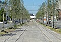 Antwerpen - Antwerpse tram, 23 juli 2019 (198, Italiëlei).JPG