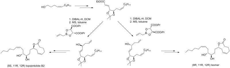Application of Roush allylation reaction