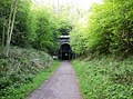 Approaching Oxendon tunnel from the north - geograph.org.uk - 446215.jpg