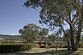 Apsley NSW 2820, Australia - panoramio (18).jpg