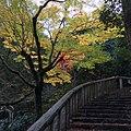 Arashiyama Genrokuzancho, Nishikyo Ward, Kyoto, Kyoto Prefecture 616-0007, Japan - panoramio (3).jpg