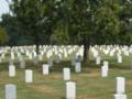Arlington-cemetery.png