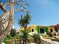 Armona Island (Portugal) - 49707135078.jpg