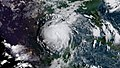 As expected Harvey has intensified into a Hurricane (35973025253).jpg