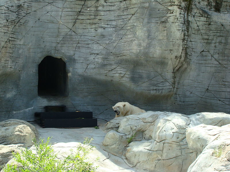 File:Assiniboine Park Zoo Winnipeg Manitoba (2).JPG