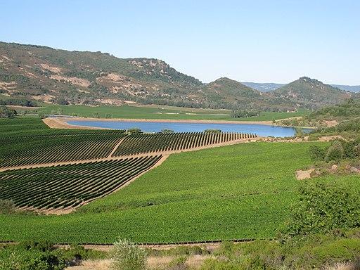 Atlas Peak vineyards Napa Valley