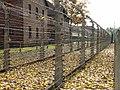 Auschwitz - Poland (74210956).jpg