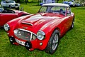 Austin Healey 3000 MkI, 1960 - TN41959 - DSC 9970 Balancer (37573984705).jpg