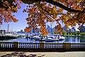 Autumn, Stanley Park Oct, 2015 - 21965159141.jpg