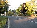 Autumn tree colour in Solent Road - geograph.org.uk - 1001484.jpg
