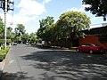 Avenida Mexico (2547090110).jpg