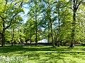 Bad Sassendorf – Kurpark - Musikpavillion - panoramio - giggel.jpg