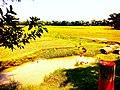 Badurtala Village.jpg