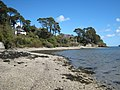 Bar Beach nr Helford Passage - geograph.org.uk - 760567.jpg