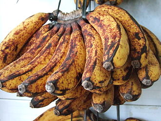 Food browning - A non-desirable enzymatic browning reaction is involved in the formation of brown spots on the peel of bananas.
