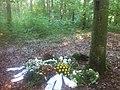Baumgrab im Ruheforst Usedom.jpg
