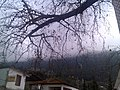 Bayir köyü - panoramio.jpg