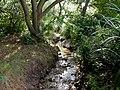 Bearwood, stream - geograph.org.uk - 1457158.jpg