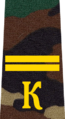 Belarus Military Academy—Internal Troops Department—04 Cadet-Junior Sergeant rank insignia (Camouflage).png