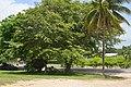 Belize - panoramio (143).jpg