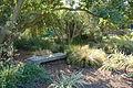 Bench - Leaning Pine Arboretum - DSC05806.JPG