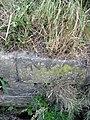 Bench mark on Saltney Quay - geograph.org.uk - 1388309.jpg