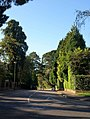 Benellen Avenue, Bournemouth - geograph.org.uk - 1537666.jpg