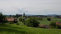 Berghausen CF9A1478a.jpg