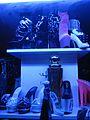 Berlin - High Heels in Showcase - 03.JPG