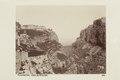 Bild från familjen von Hallwyls resa genom Algeriet och Tunisien, 1889-1890 - Hallwylska museet - 92014.tif