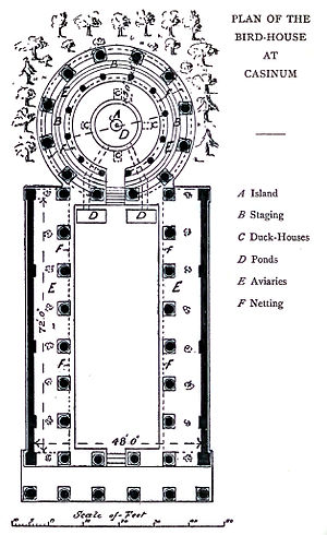 Marcus Terentius Varro - Plan of the birdhouse at Casinum designed and built by Varro